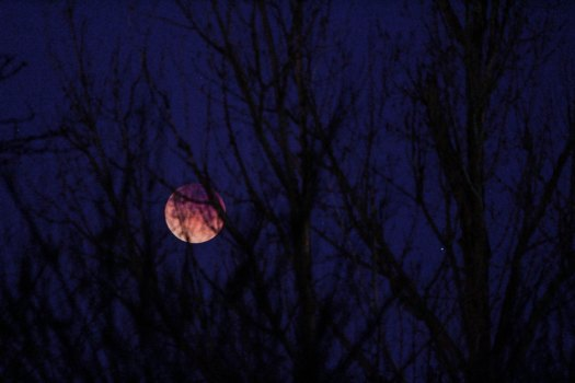 avery-lewis-lua negra-unsplash